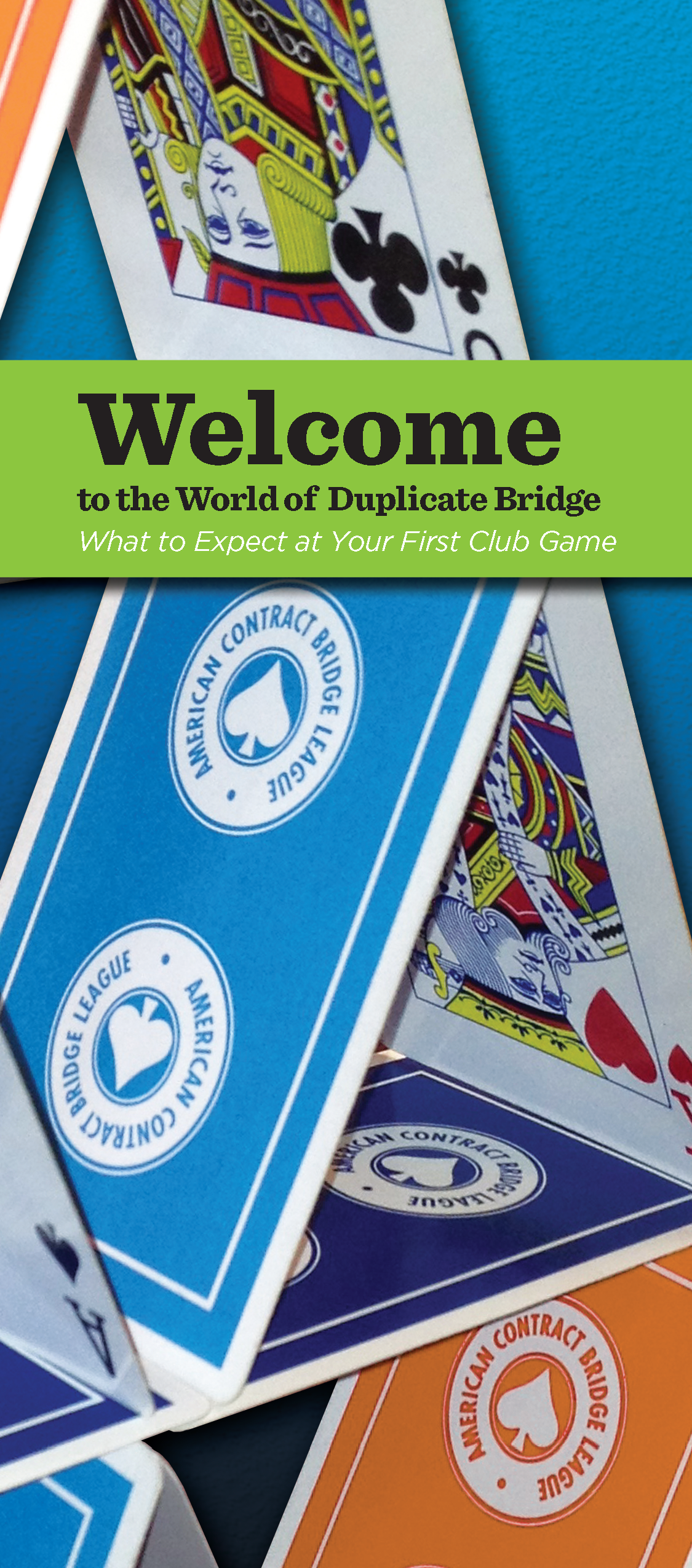 The Exciting World of Bridge is back