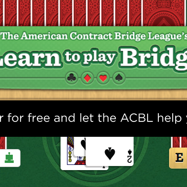 Strengthen your lessons with Learn To Play Bridge