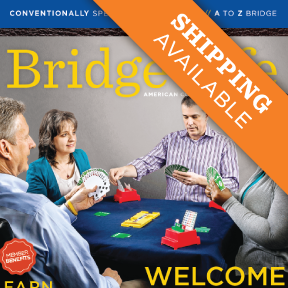 bridge_life_Shpping_avaiable__90021_1414511054_480_480